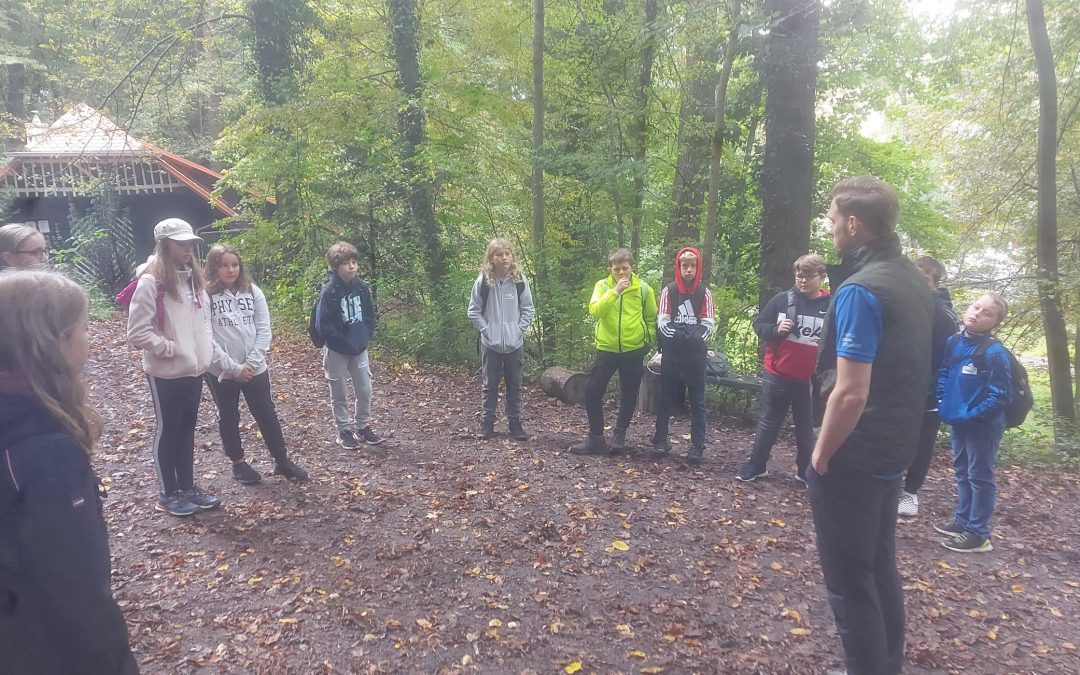 """The 2c in the """"forest-school"""""""
